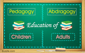 Differences And Similarities Between Pedagogy And Andragogy
