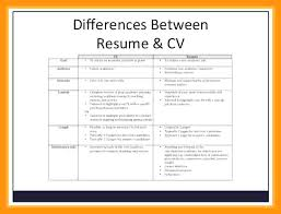 Undergraduate Student Cv Example Curriculum Vitae Example Undergraduate C V For Students