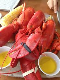 Lobster fest in Maine!