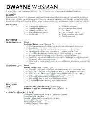 Fashion Stylist Resume Examples Fashion Stylist Resume Resume Enchanting Fashion Resume Examples