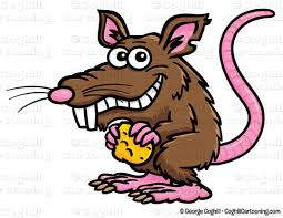 Image result for rat clipart