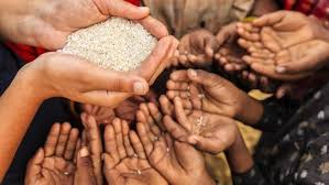 Direct link between malnutrition and diseases: UN's WFP India country  director | Deccan Herald