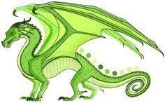 chameleon is a yellowish lime green male rainwing the color of limes and jungle parakeets with narrow shoulders