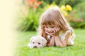 Image result for pet dog images