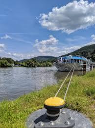 Swiss Crown Flussinspektor