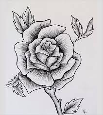 Small Picture 18 Rose Drawings Free PSD Vector AI EPS Format Download