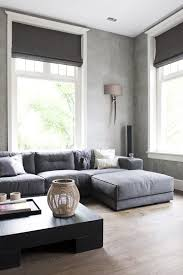 Attractive Grey Roman Blinds. Nice Ideas
