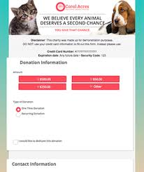 Donorperfect Integrated Online Forms
