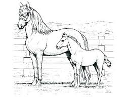 Realistic Horse Coloring Pages Horse Head Coloring Pages Realistic