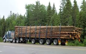 Our Mission Logging Safety