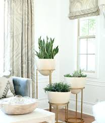best low maintenance houseplants balcony garden web lovely great indoor plants low light or snake plant