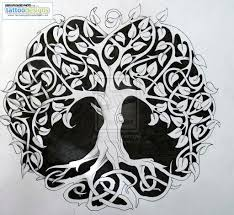 Huge Collection Of Celtic Tree Of Life Drawing Download More Than