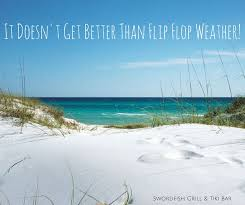Florida Quotes Magnificent Pin By Eileen Robinson On Jersey Pinterest Florida Quotes And Beach