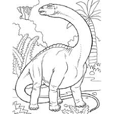 dinosaur colouring pages. Perfect Dinosaur Pachycephalosaurus Dinosaur To Color  Dino Coloring Pages Catrak  Image  For Colouring L