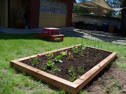 Small Picture Home Vegetable Garden Design Home Design Ideas Beautiful Home