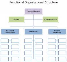 Functional Organizational Chart Download The Functional Organizational Structure Chart From