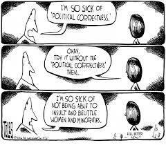 Image result for political correctness