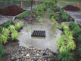 Small Picture Green Solution Rain Garden 3 Rivers Wet Weather