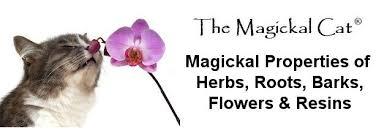 Herb Grimoire Magickal Correspondences Of Herbs Flowers