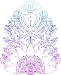 Moon Mandala Design Amazon Com Beautiful Lotus Flower Floral Mandala Design