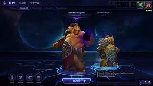 heroes of the storm update single hero played by two players