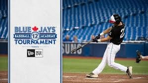 Depth Chart Blue Jays Baseball Academy Toronto Blue Jays