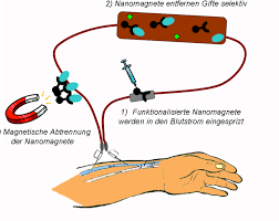 Nano Magnete Reinigen Blut