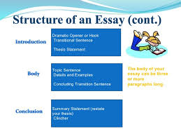 essay writing power point  3 dramatic opener or hook transitional sentence