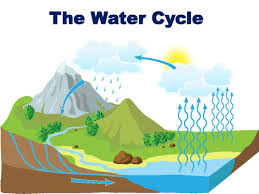 tips for an application essay water cycle homework help the water cycle lesson plan objectives the students will be able to identify the water cycle process plus define and accurately explain each of the steps