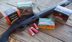 Shotgun hunting shells penetration