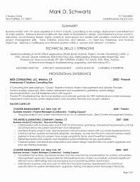 It Business Analyst Resume Examples Resume Objectives For Business Analyst New Business Systems Analyst 22