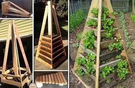 vibrant vertical garden pyramid planter
