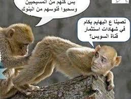 """Résultat de recherche d'images pour """"العرص السيسي"""""""
