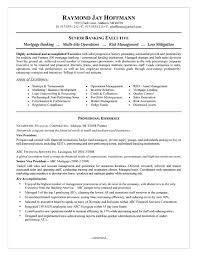 Banking Executive Sample Resume 16 Bank Examples Top 10 Objective