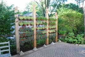 This idea not only serves the purpose of creating privacy, but additionally  gives you more room to grow an herb garden by utilizing vertical space.