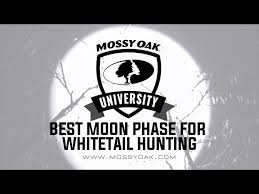 The Effect Moon Phase Has On Hunting Deer Mossy Oak