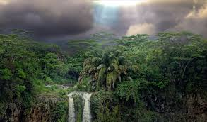 dark clouds over rainforest waterfall