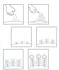 Small Picture 87 best Plantes images on Pinterest Teaching science Plants and