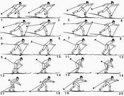 обучения попеременному двухшажному ходу Методика обучения попеременному двухшажному ходу
