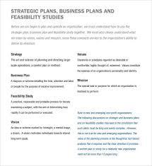 Format For Business Plans 23 Non Profit Business Plan Templates Word Pdf Google