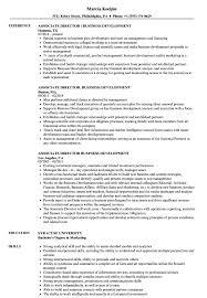 Associate Director Business Development Resume Samples Velvet Jobs