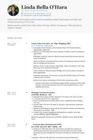 sales professional resume examples silicon valley resume templates kor2m net
