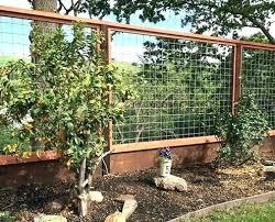 wire fence designs. Unique Wire Wire Fence Designs Hog Fences Panels    With Wire Fence Designs O