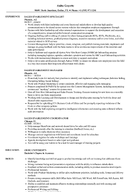 Sales Enablement Resume Samples | Velvet Jobs