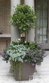 learn about the container garden