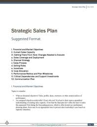 042 Marketing Strategy Plan Pdf Example Of Strategic Sales