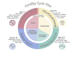 Periods Diet Chart Fertility Diet Suggestions From Japanese Acupuncture Clinic