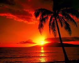 Beach Sunset Wallpaper ...