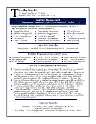Cute It Professional Resume Profile Examples Gallery