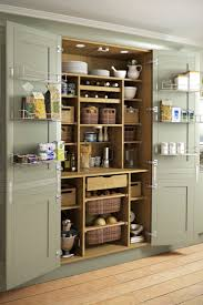 Kitchen Closet Pantry Best 25 Pantry Cupboard Ideas On Pinterest Pantry Cupboard